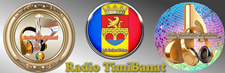 Radio TimiBanat Eurodisco